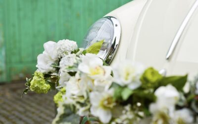 Flowers used to decorate our wedding VW campers and beetle
