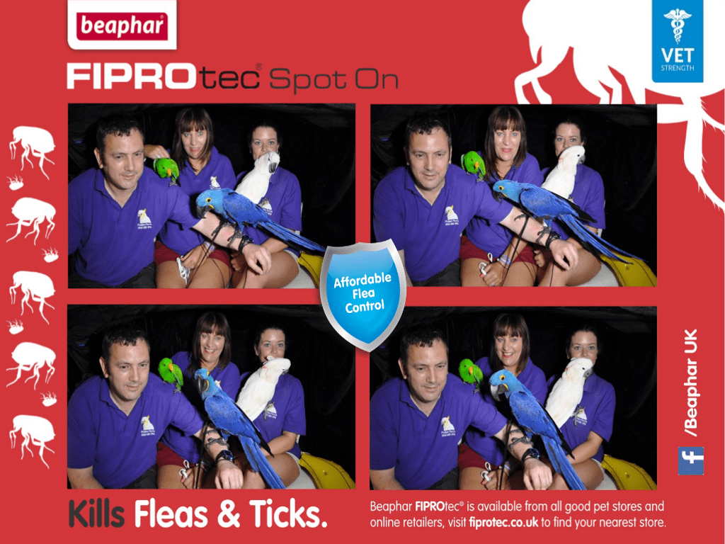 branded campervan photobooth with instant prints for promo exhibition