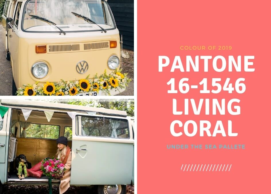 Pantone Living Coral – a retro 1970s vibe with a serious message