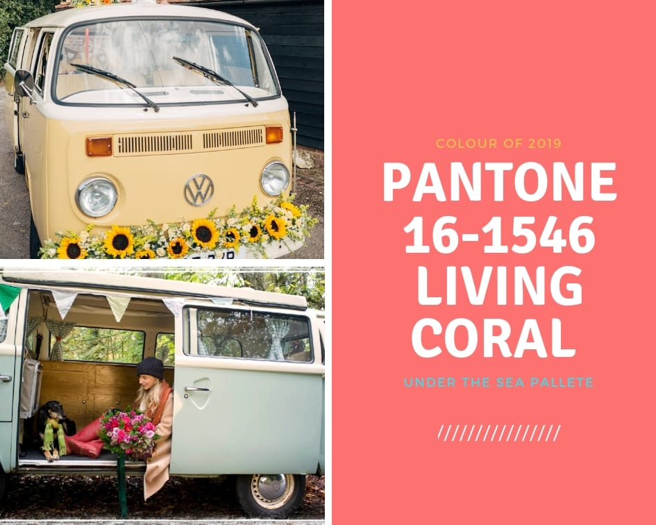 Pantone Living Coral - a retro 1970s vibe