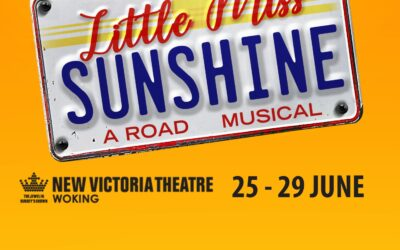 Visit the Little Miss Sunshine Campervan Photobooth in Woking